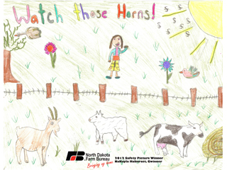 Gwinner student wins Safety Picture Contest