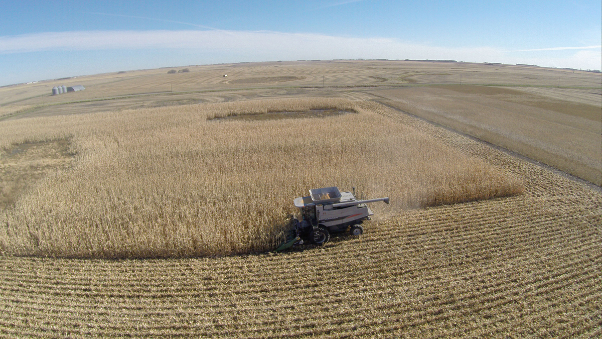 Drone flexibility needed for ag
