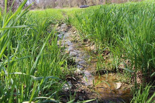Farm Bureau decodes water rule proposal