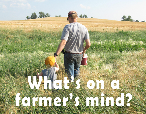 What's on a farmer's mind? Healthy crops!