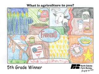 NDFB Week poster contest winners named